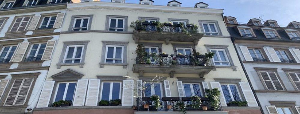 http://werth-immobilier.fr/wp-content/uploads/2019/03/fevre2.jpg