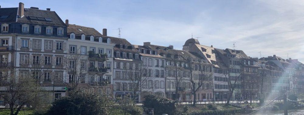 http://werth-immobilier.fr/wp-content/uploads/2019/03/fevre5.jpg